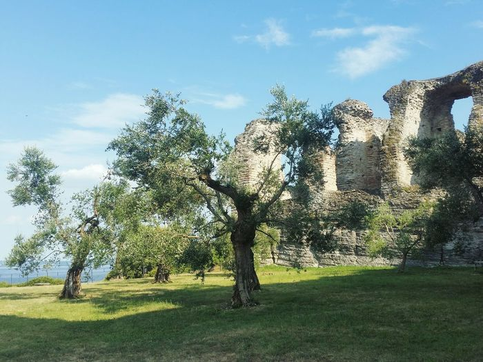 Ruin Ancient