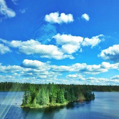 Pine tree Island. • Tstcanada with @explorecanada and @VIA_Rail • Viarail Travel Train Canada • ExploreCanada •