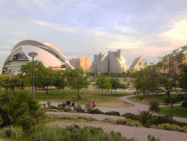 A view of Valencia Opera House. Real People Tree Architecture Sky Built Structure Leisure Activity Building Exterior City Outdoors Modern València SPAIN Opera House Park Public Open Paths