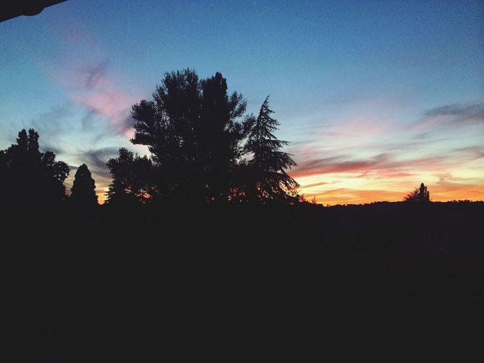 ? Summer Landscape Sunset Hanging Out