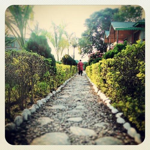Dooars__trip Resort_garden