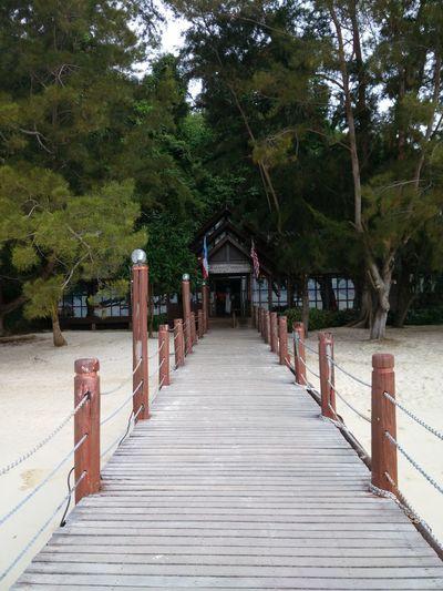 Tree Outdoors Railing No People Day Island Island Hopping Sand