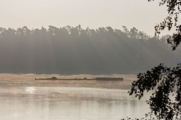 Beauty In Nature Day Fog Growth Hazy  Lake Landscape Mist Nature No People Outdoors Reflection Scenics Sky Tranquil Scene Tranquility Tree Water