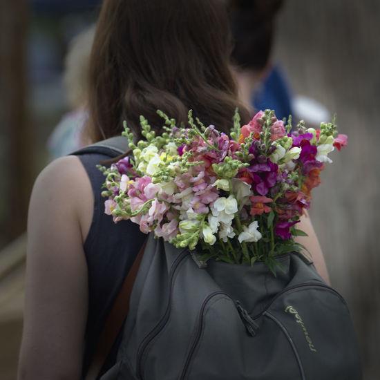 Flower Real