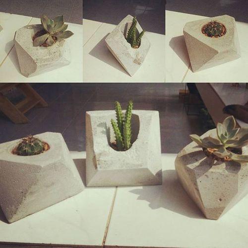 กระถางปูนเปลือยทรงดิบๆ Rustic Loft Cactusthailand Cuctus Cactus Cacti Cactusclub Cactuslover Dib_te Plants Plnter Gardening Garden Design Style DIY กระถางกระบองเพชร กระถางปูนเปลือย กระถาง