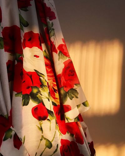 The light from sunrise spilling into the bedroom and on the silk rose dressing gown this morning Red Indoors  Close-up No People Day Sunlight Silk Dressing Gown Roses Morning