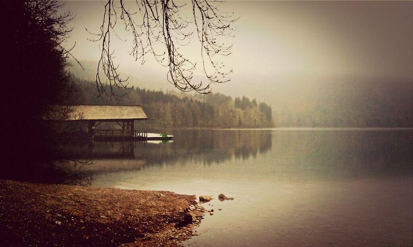 Fog Chasing Fog EyeEm Nature Lover