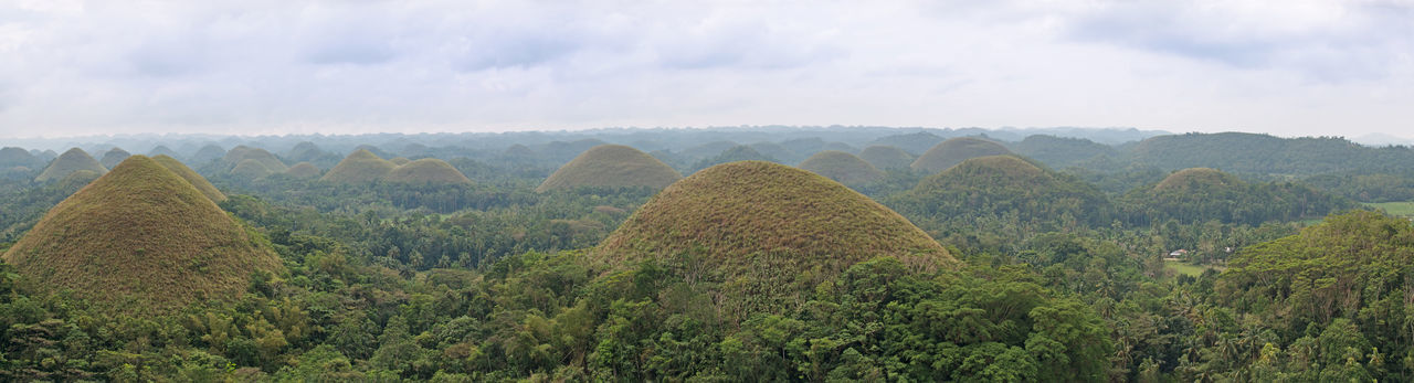 Panoramic view of the Chocolate Hills in Bohol, Philippines. Beauty In Nature Bohol Chocolate Hills Cloud - Sky Forest Green Color High Angle View Idyllic Landmark Landscape Mountain Nature Non-urban Scene Philippines Physical Geography Scenics Sky Summer Tourism Tranquil Scene Tranquility Travel Travel Destinations Tree Vacations