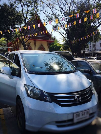 Car Make Merit Honda Honda Freed Freed White White Car Outdoors Temple - Building Temple Way Of Life Light And Shadow Land Vehicle Mode Of Transport Transportation Tree No People Day Car Roof