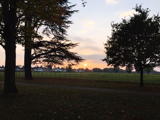 Osterley Park First Eyeem Photo