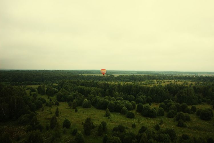 Tranquil Scene Tranquility Scenics Scenics - Nature Panoramic Photography Panoramic Panoramic View Landscape_photography View View Into Land View From Above From Above  Forest Forest Photography Forest Trees Trees Trees And Sky Baloon Hot Air Balloon Hot Air Balloons Hotairballoon Spot Aeronautics View Natural Beauty Beauty In Nature Sky Horizon Over Water Cloud - Sky The Great Outdoors - 2018 EyeEm Awards