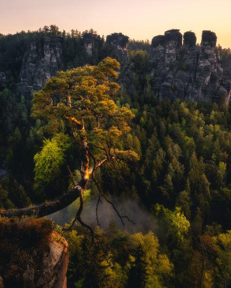 Photo taken in Pirna, Germany
