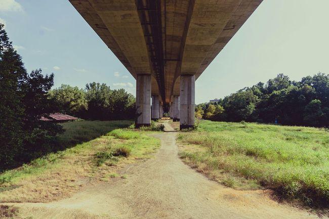 Summer Views Bridge view Richmond Virginia