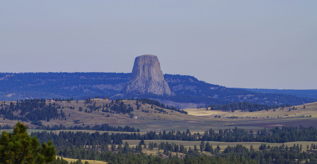 Devils Tower National Monument Wyoming with prairie forground Bear Lodge Mountains Crook County Devil Devil's Tower Lava Columns National Monument Nature North America Panorama Rock Geology USA WoodLand Wyoming America Conservation Devils Tower Geology Holy Place Landscape Prairie Sandstone Volcanic Rock Wilderness Woodlands