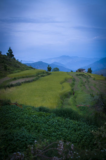 Beauty In Nature Day Field Grass Green Color Landscape Mountain Mountain Range Nature No People Outdoors Scenics Sky