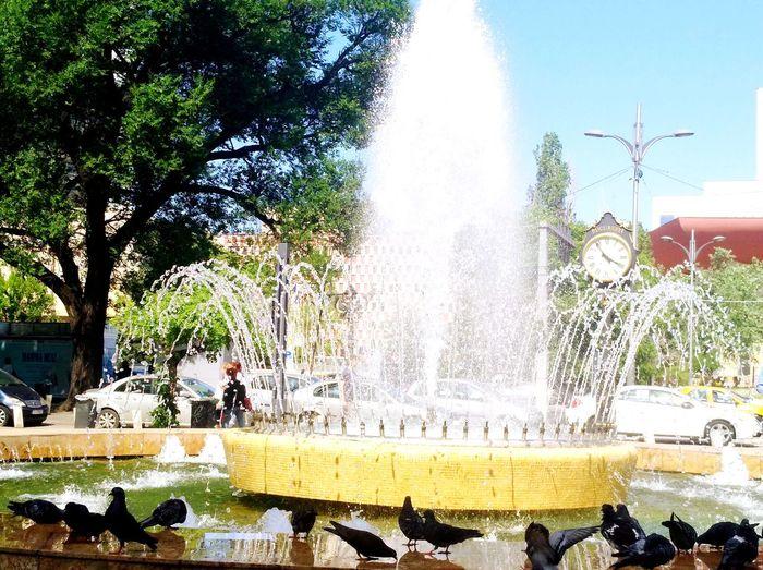 summertime :) Summer ☀ Tree Water Spraying Motion Fountain Water Park Sky Splashing The Street Photographer - 2018 EyeEm Awards