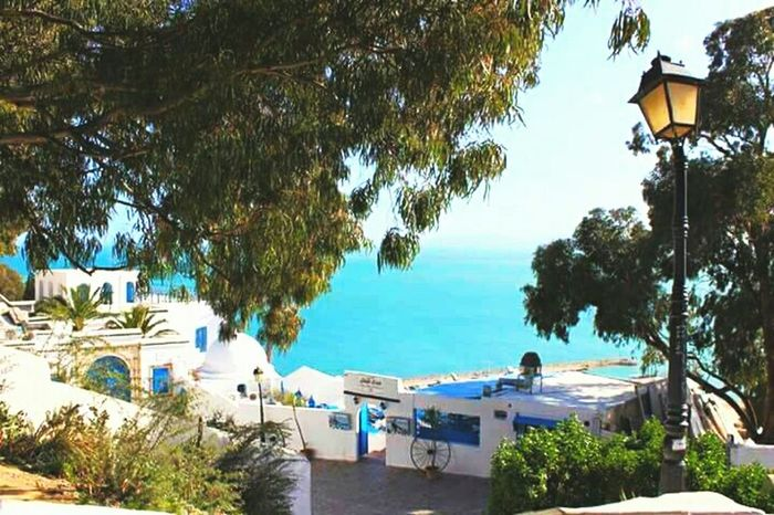 HelloEyeEm Enjoying The View View Nice Day Sea And Sky Relaxing Enjoying Life Tunisian Sidi Bou Said