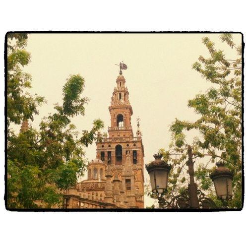 Sevilla gris camino del #instameetsevilla Unaciudadtumirada Instameetsevilla