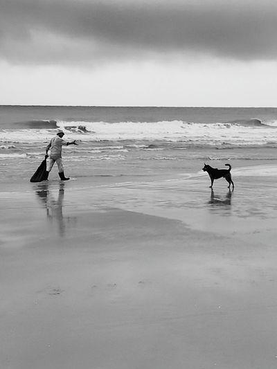 stop Stop Human And Dog Sea Beach Enjoying Life Taking Photos Thailand Hello World Holiday Huaweiphotography Huawei P9 Plus