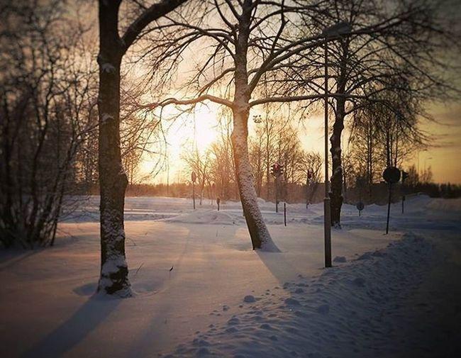 Kylmää ja pakkasta. 😊 Cold winterday in Finland. Beautiful Winter Winterday Finland Frost Snow Sun Sunday Landscape Landscapephotography Sonyxperia Sonyxperiaz2 Pakkanen Talvipäivä Sunnuntai Maisema