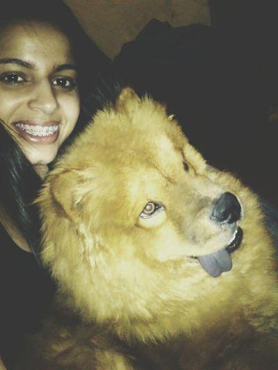 Dog Love ChowChow Mydog♡ Amormeu♥♥