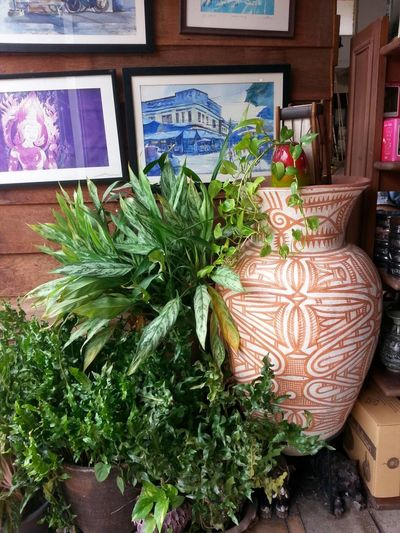 The garden with jar Relaxing That's Me Enjoying Life Hello World Taking Photos Hi! Happy Time See That The Tree!!! Wall Art Wall-picture Jar Of Clay At ร้านท้ายทุ่ง 85/2 หมู่ที่ 2 มะเกลือเก่า สูงเนิน นครราชสีมา ไthailand