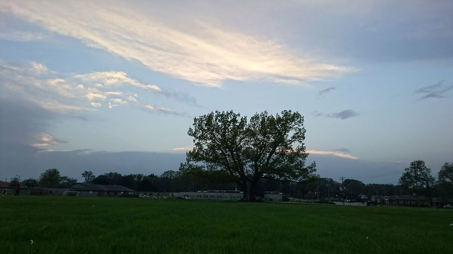 Beauty In Nature Cloud - Sky Day Nature No People Outdoors Scenics Sky Tree
