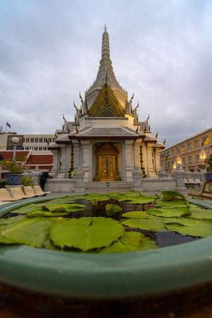 A pool of fresh green Lily pond leaves in front of a Buddhist pagoda temple near the Grand Palace, Bangkok, Thailand. Bangkok Lily Leaves Pagoda Architecture Buddhist Temple Building Exterior Built Structure Day Lily Pond Nature No People Outdoors Place Of Worship Religion Sculpture Sky Spirituality Statue Water