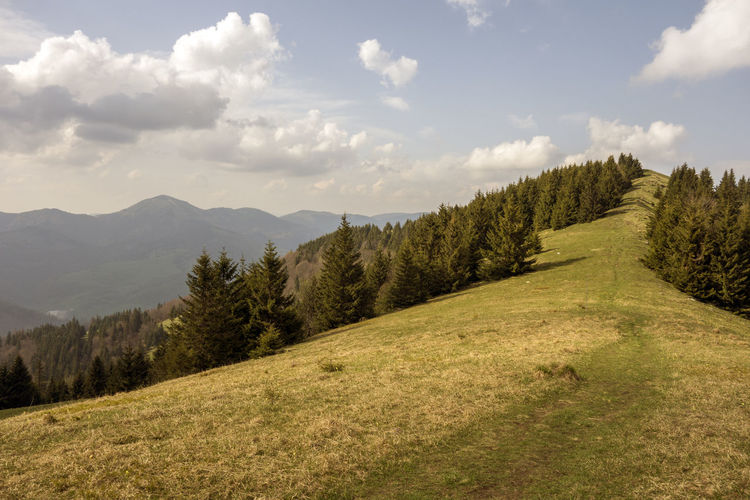 landscape Donovaly Slovakia Velka Fatra Beauty In Nature Cloud - Sky Day Environment Grass Green Color Growth Idyllic Land Landscape Mountain Mountain Peak Nature No People Non-urban Scene Outdoors Plant Rolling Landscape Scenics - Nature Sky Tranquil Scene Tranquility Tree Zvolen