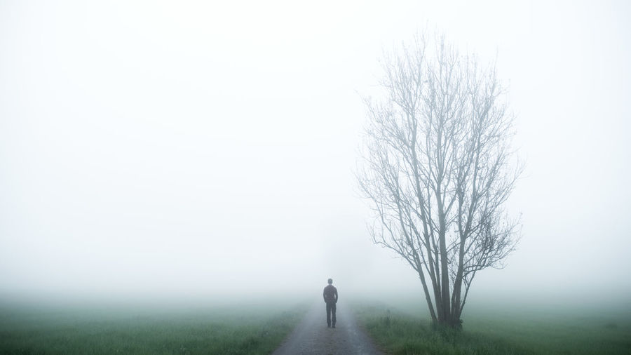 EyeEmNewHere Bare Tree Beauty In Nature Cold Temperature Day Dog Fog Full Length Grass Landscape Mature Adult Nature One Person Outdoors People Rear View Road Scenics The Way Forward Tranquil Scene Tranquility Tree Walking Winter