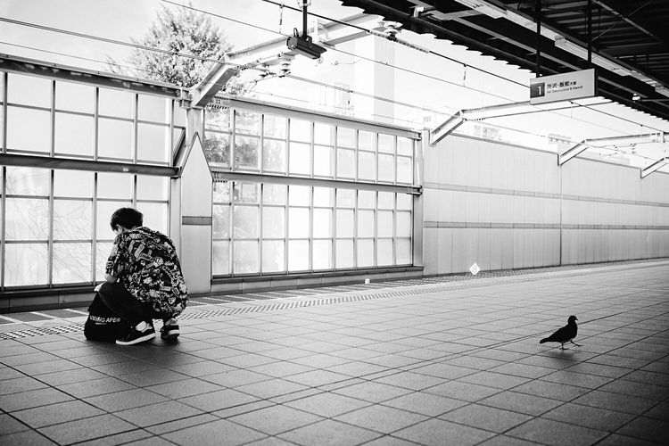 B&w Street Photography Juxtaposition Street Photography Streetphoto_bw EyeEm Best Shots - Black + White EyeEm Best Shots EyeEm Masterclass This Week On Eyeem Sony A7RII Leica Summicron 35 Showcase: December