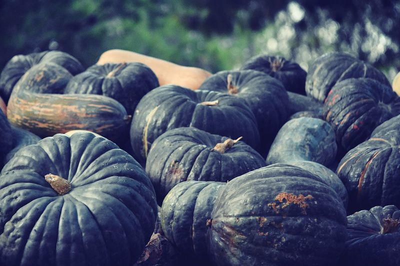 Close-Up Of Pumpkins For Sale