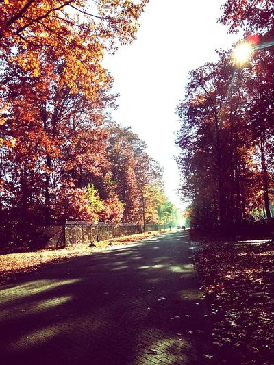Autumn Colors Home Sweet Home Hello World Autumweather
