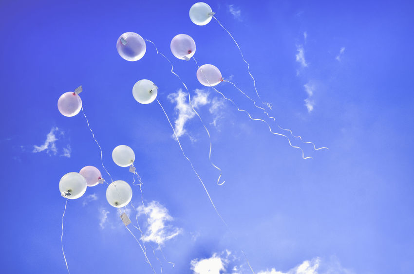 ballons blue sky and wishes in the air Birthday Party Birthday Balloons Christening Fly Flying High Wishes Balloon Balloons Bird Birhday Birthday Blue Blue Sky Christening Day Christening 💙 Cloud - Sky Festival Flying Low Angle View Mid-air Sky Wishes In The Air