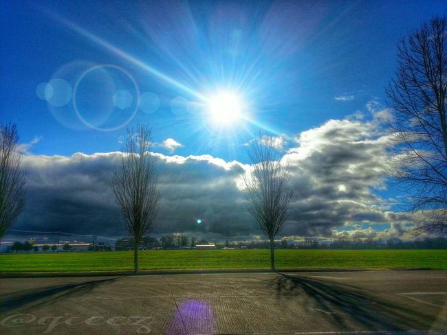 """When I look into the future, it's so bright it burns my eyes."" ~Oprah~ Inspiration Bright Future Oregon WillametteValley Clouds And Sky Taking Photos Mobileediting Loveforphotography TravelOregon Oregonexplored PNW"