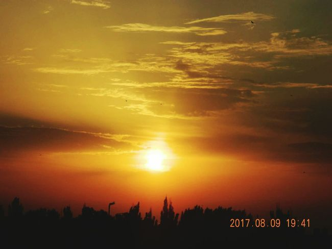 Sunset Nature Scenics Silhouette Landscape No People Sky Gold Colored Beauty In Nature Day