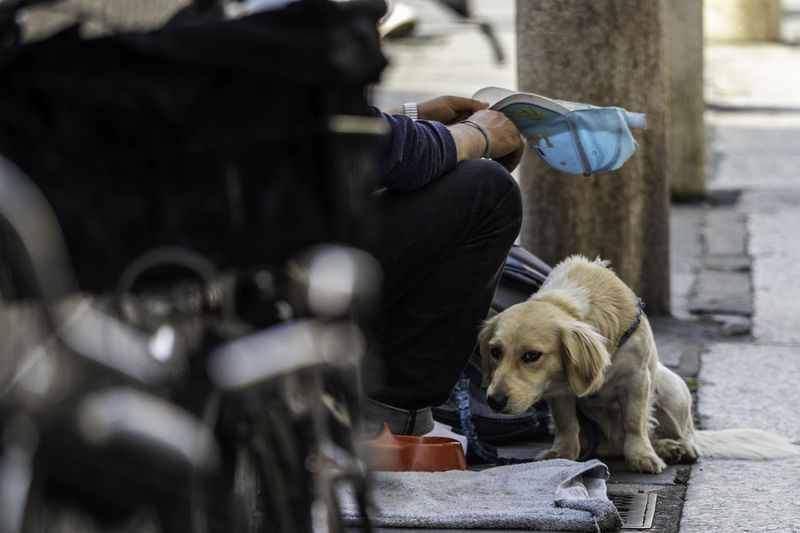 Reportage Homeless Canine City Day Dog Domestic Domestic Animals Mammal Men One Animal Outdoors People Pet Owner Pets Real People Sitting Social Issues Vertebrate The Photojournalist - 2018 EyeEm Awards