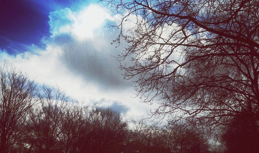 Sunshine Sun And Clouds Sillouette Of Trees Sun Clouds Cloud - Sky Cloudscape Blue Sky Puffy Clouds Cloudy Freshness Outdoors Beauty In Nature