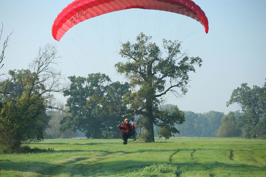 Fly Hang Gliding Paragliding Red Adventure Flying Gliding Grass Hang Glider Hangglider Nature Outdoors Sport Tree