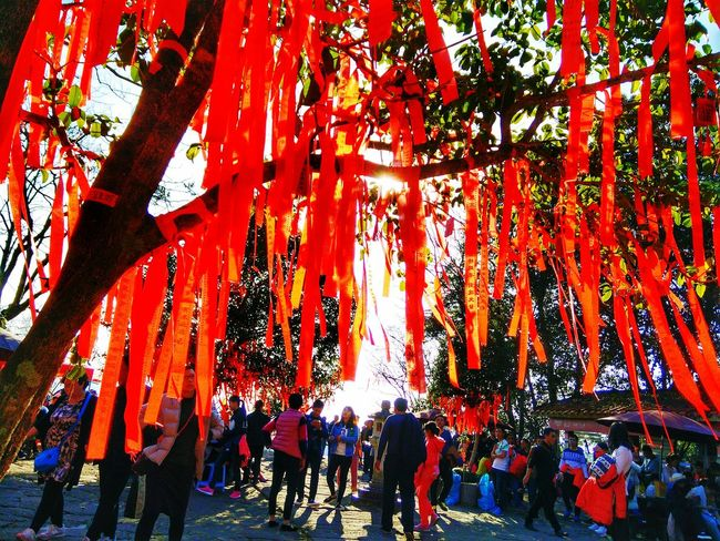 Wish Tree Wishing Tree Showcase: February Chinese New Year 2016 Chinese New Year TreePorn Chinese New Year In Photographs Chinese New Year -the Year Of The Monkey. Check This Out