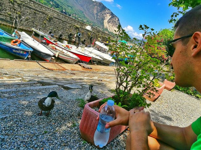 Snap A Stranger Lifestyles Day Real People Outdoors Only Men Vacations Men Sky Nature Beauty In Nature Tranquility Italytrip Green Ducks Animals Observing Nature