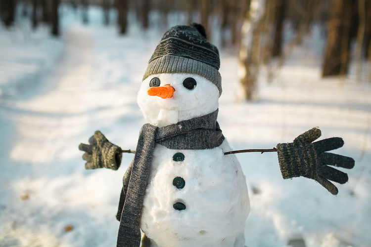 Close-up of person wearing hat on field during winter snowman