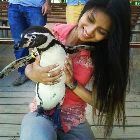 <3 Instachile Pingüino Lindo  !