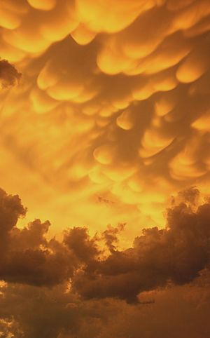 Clouds Crazy Scienceworld Evenement Mammatus Clouds Italy Pesaro Incredible Orange