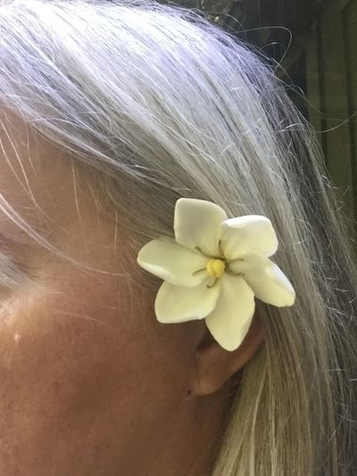 Gardenia Flower Gardenia Jasminoide Gardenia Jasminoides Beauty In Nature Close-up Day Flower Flower Behind Ear Flower Head Flower In Hair Fragility Freshness Gardenia In Hari Nature One Person Outdoors Petal Real People