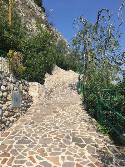 Village Path Sky Blue Sunshine ☀