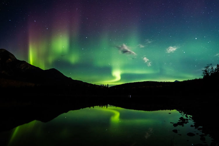 Northern lights from patricia lake in jasper national park