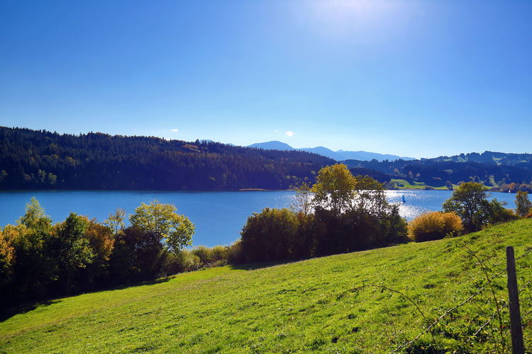 Scenic view of landscape and lake against blue sky