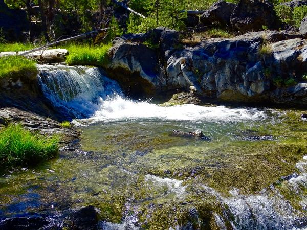 Peter Skene Ogden Trail, Paulina Lake Beauty In Nature Day Flowing Water Forest Grass Motion Nature No People Outdoors River Scenics Tranquil Scene Tranquility Tree Water Waterfall