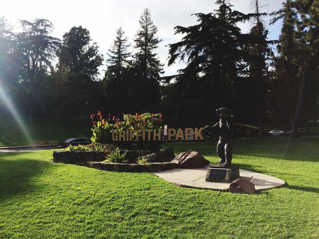 Griffith park at LA